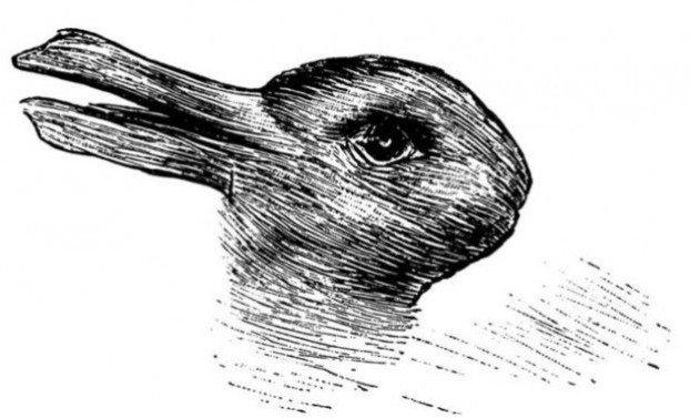 patka-zec