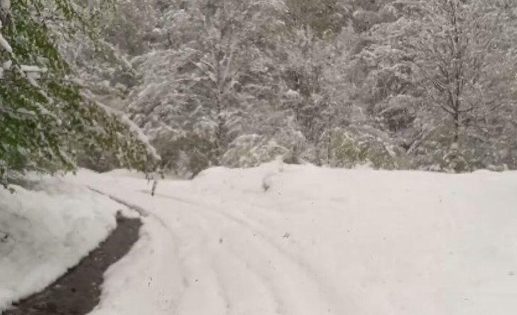 snijeg-foto-ilustracija
