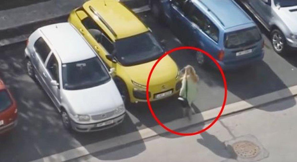 plavusa-parking