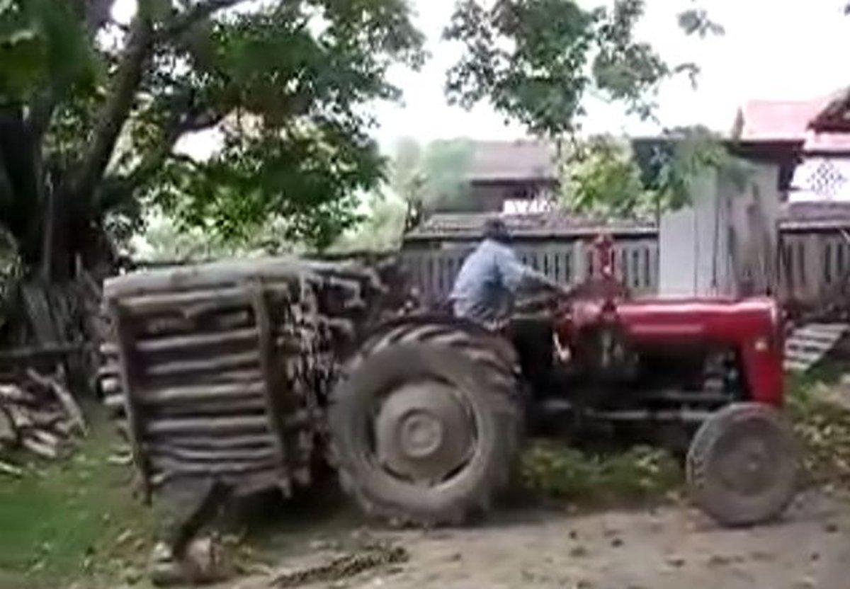 bosanac-drva